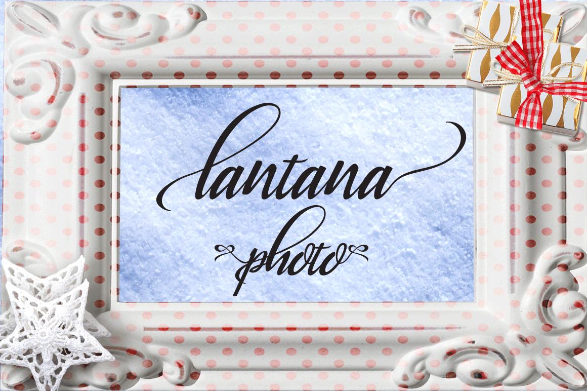 Lantana example image 6