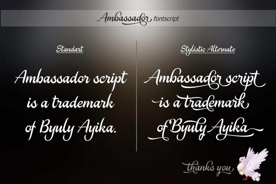 Ambassador example image 8