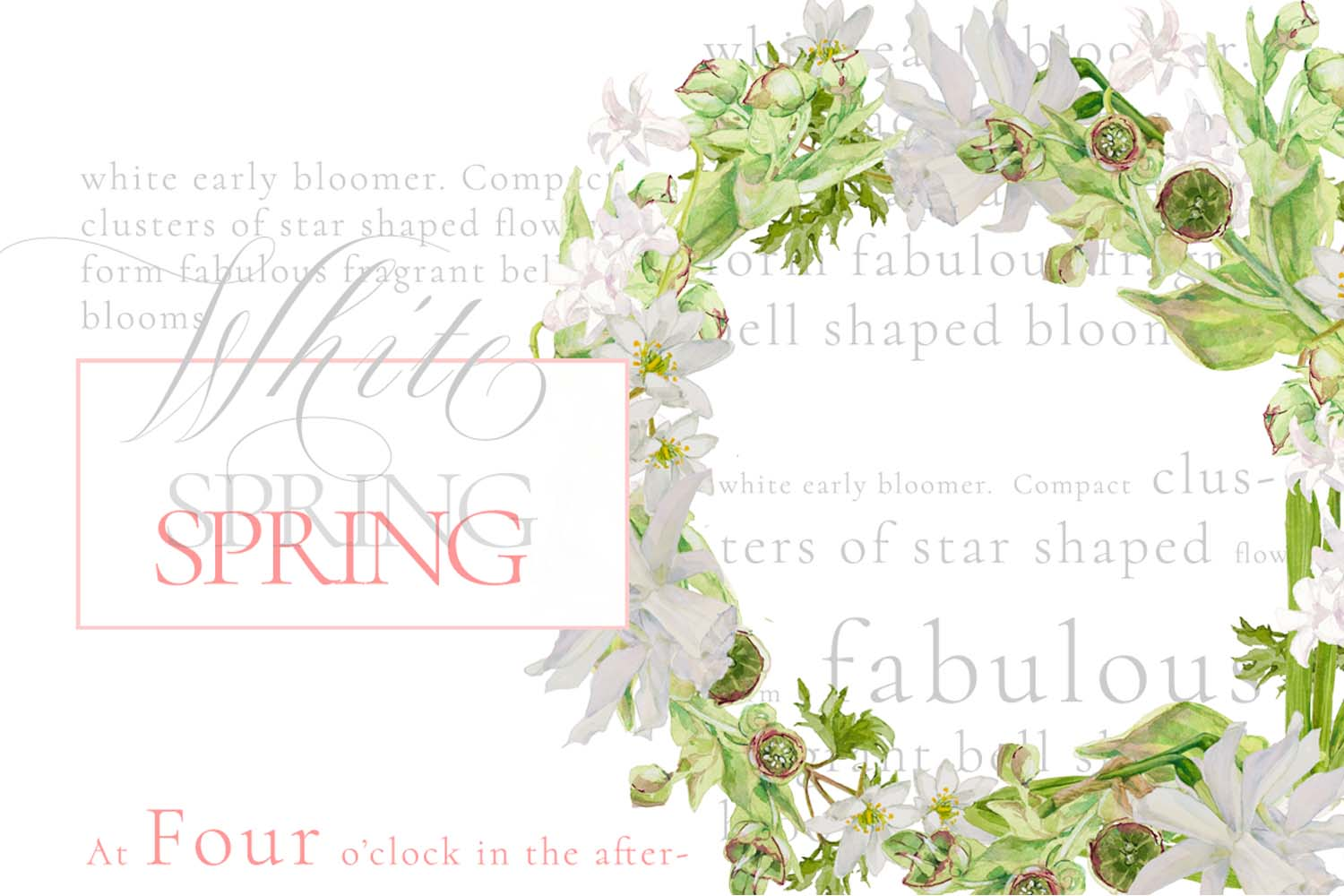 White Watercolor Bouquets & Wreaths example image 3