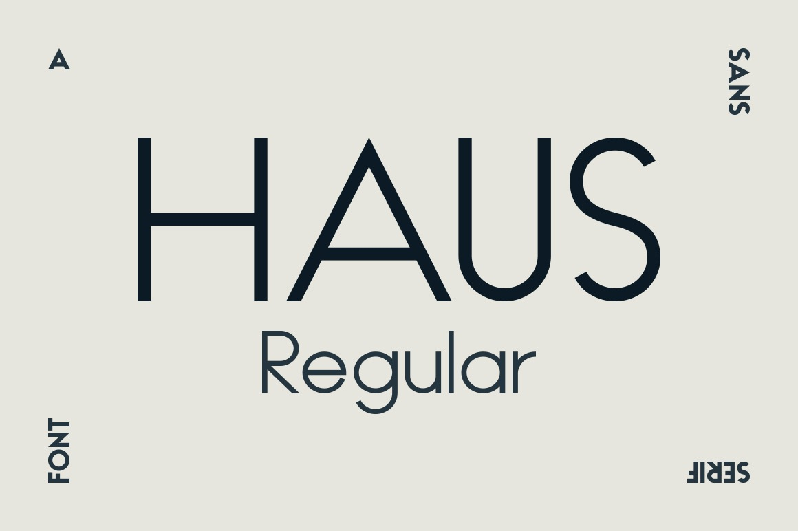 HAUS Sans Regular example image 1