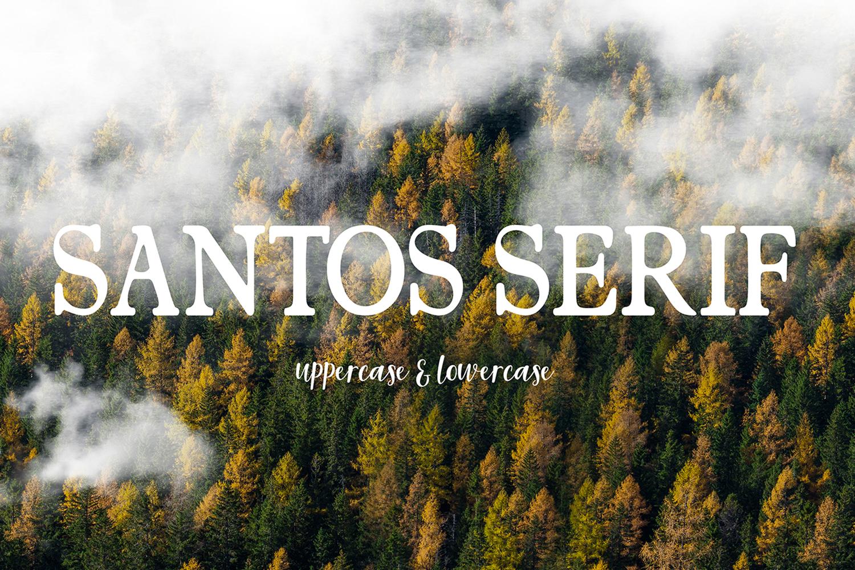 Santerios Santos  example image 10