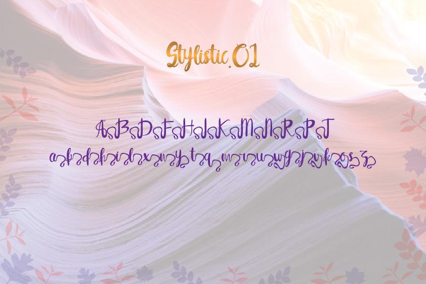 Syelma+Swashes example image 12