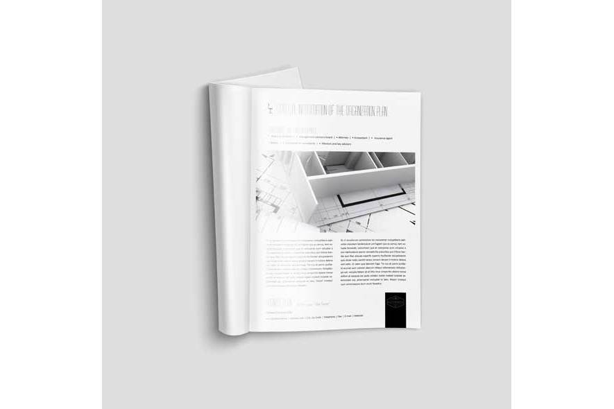 50+ Pages Business Plan Template example image 2