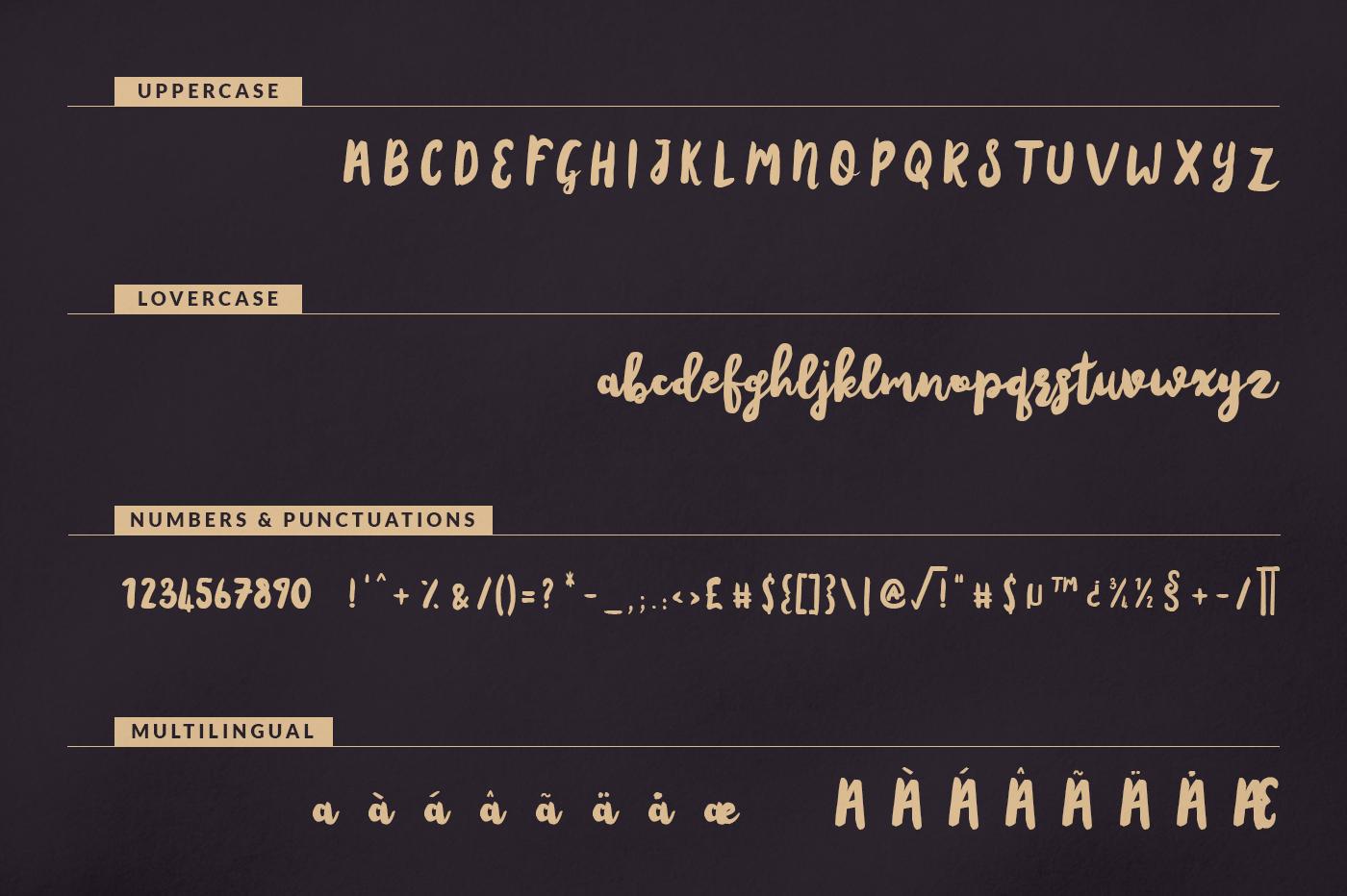 Amsterdam Script example image 9
