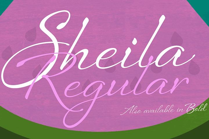 Sheila Regular example image 1