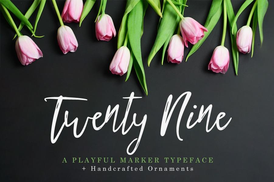 Twenty Nine Cover