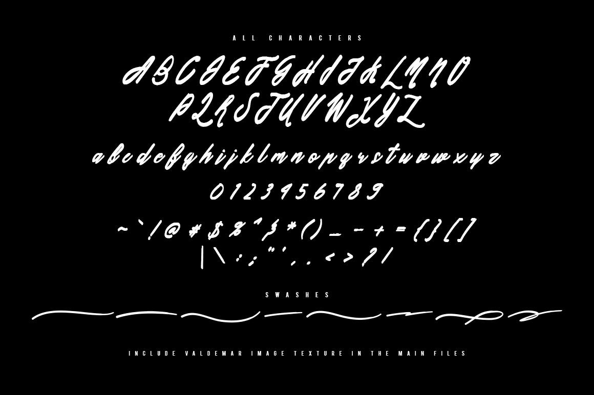 Valdemar Typeface + Swashes example image 9