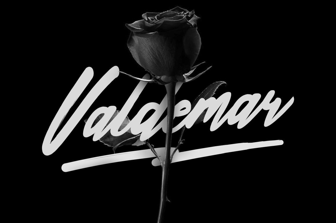 Valdemar Typeface + Swashes example image 1