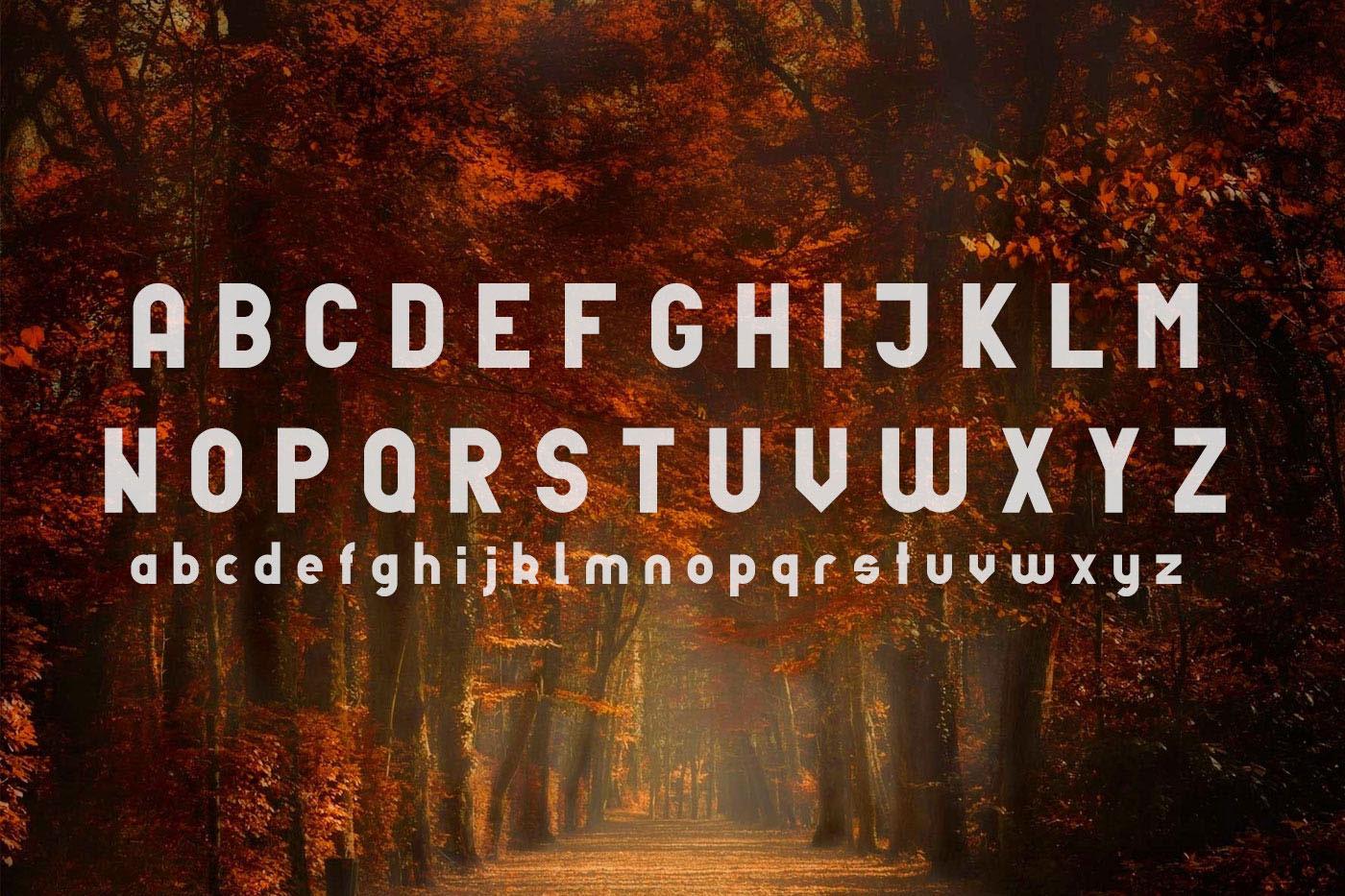 Unfinished typeface example image 7