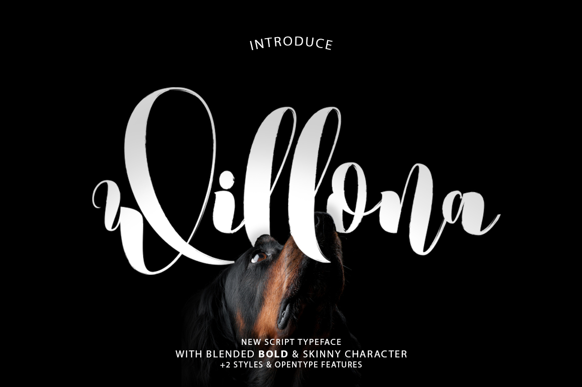 Willona Typeface example image 1