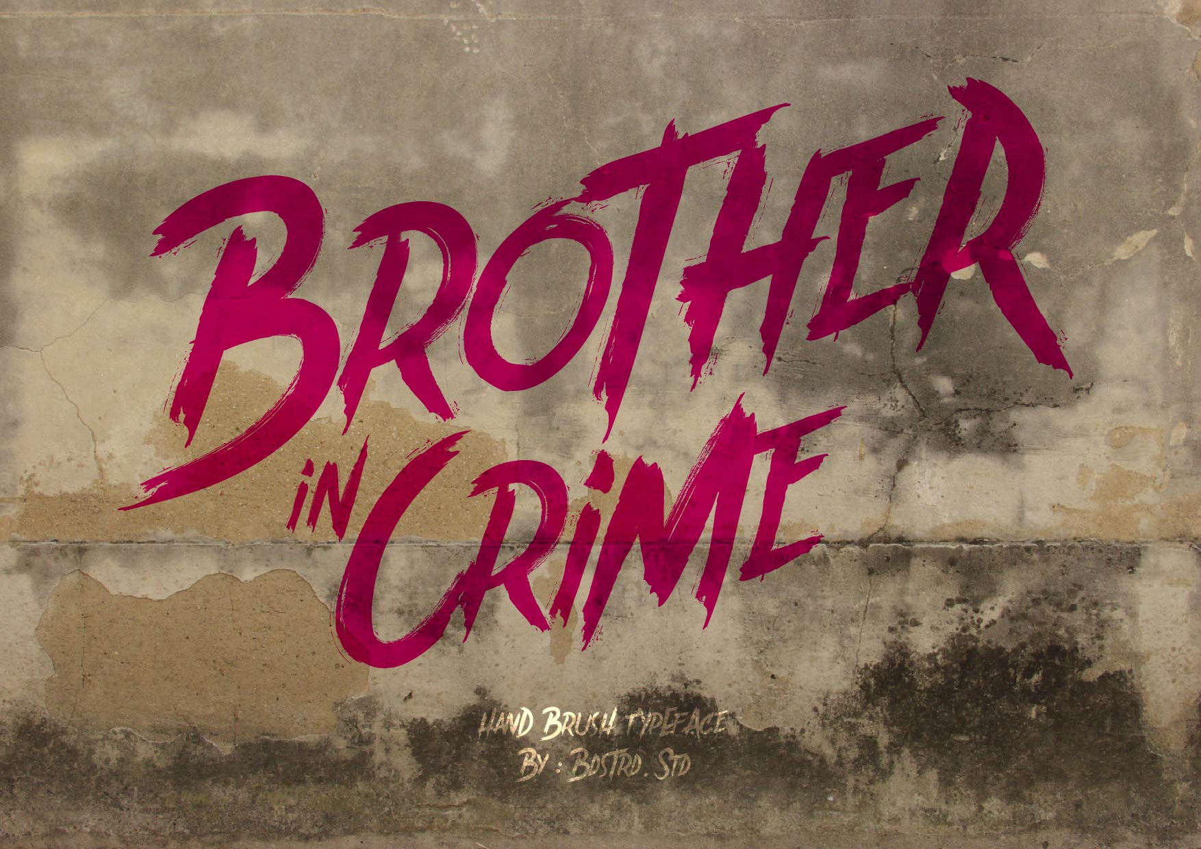 Brother In Crime example image 1