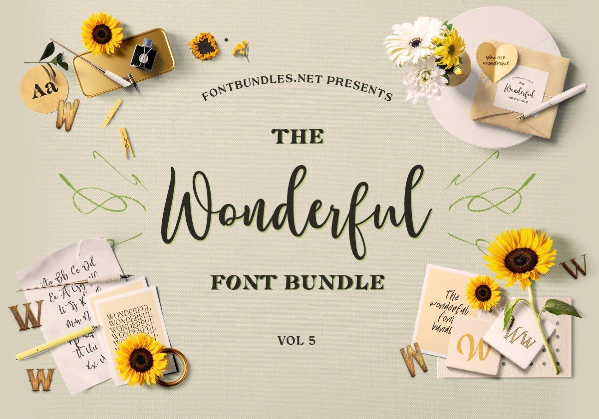 The Wonderful Font Bundle 5 Cover