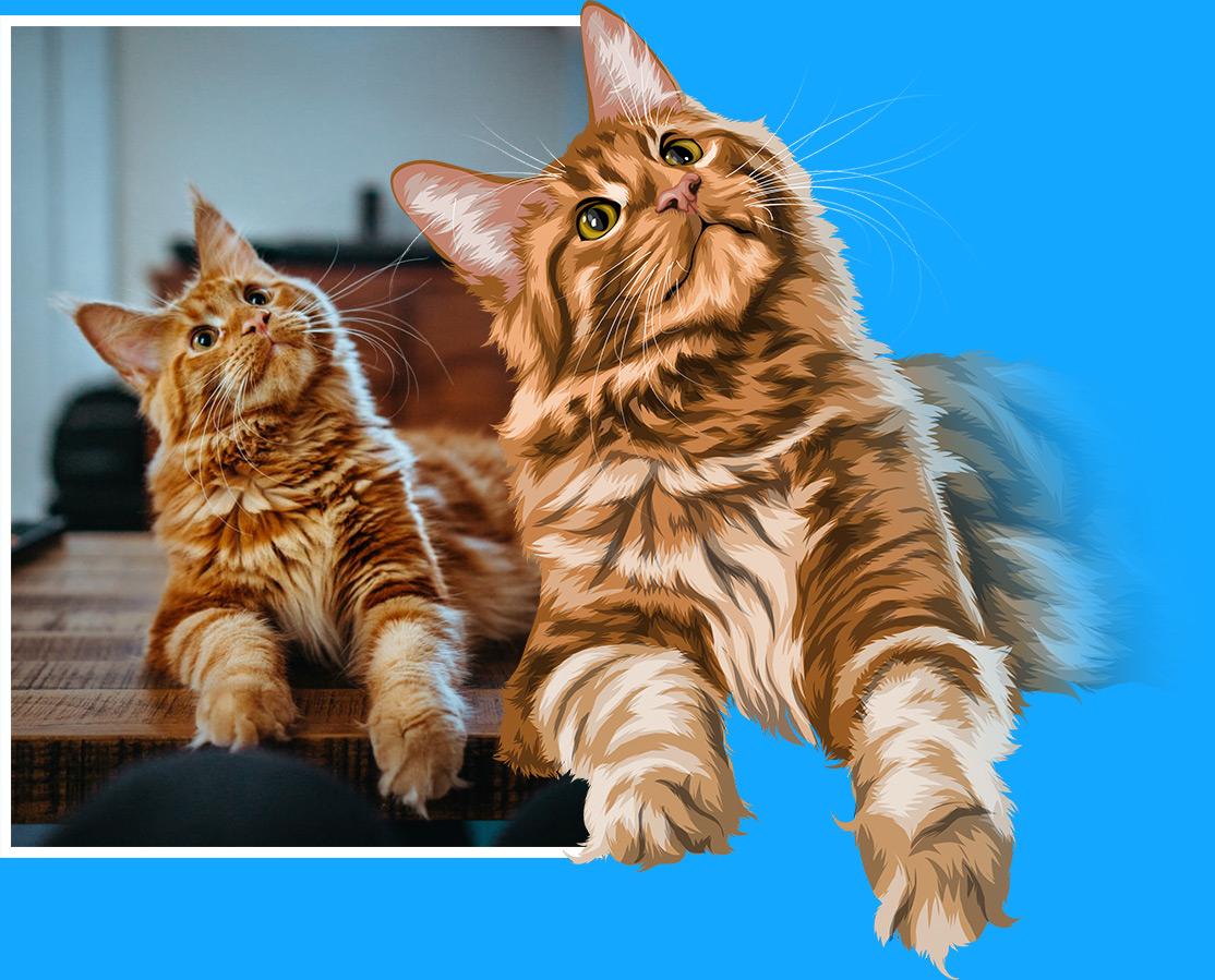Cat Example Vector