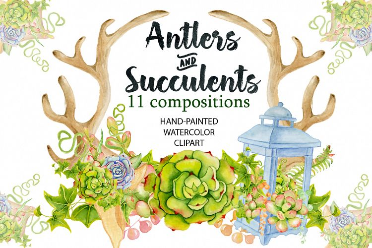 Watercolor Antlers and succulents example image 1