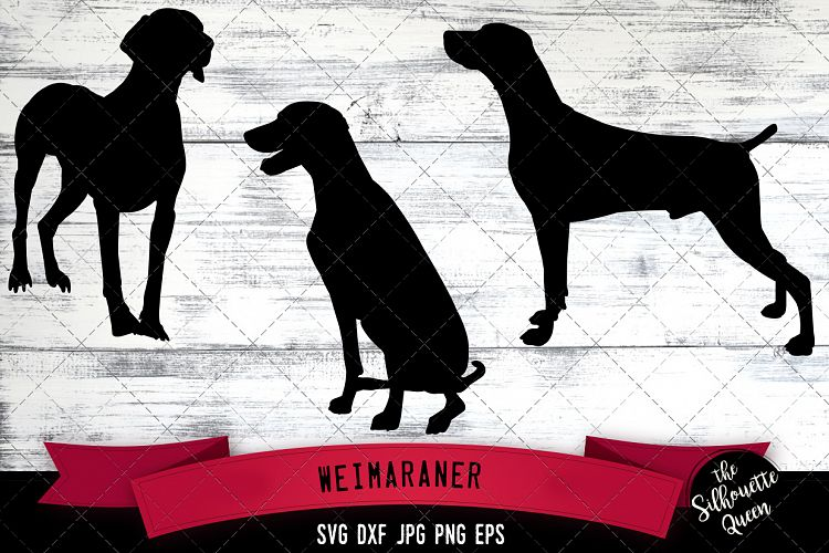 Download Weimaraner SVG Files, Dog Svg, Silhouette File, Cricut File