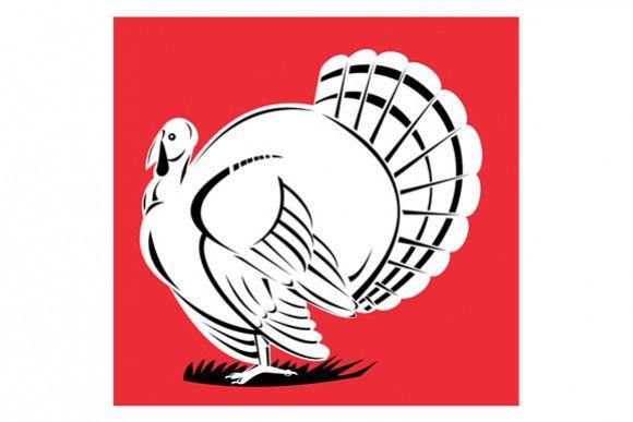 Turkey Retro example image 1