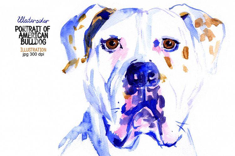 Watercolor American Bulldog example image 1