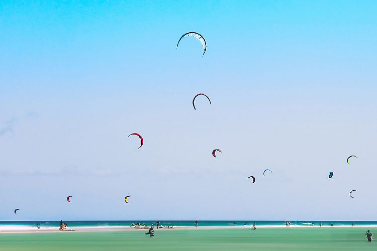 Kites example image 1