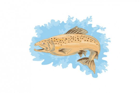 Trout Fish Jumping example image 1