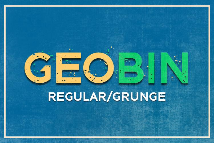 GEO BIN Regular/Grunge example image 1