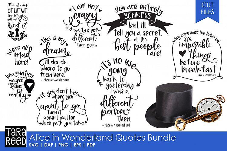 Alice In Wonderland Quotes Bundle 80883 Cut Files Design Bundles