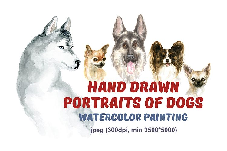 Hand drawn portraits of dogs. Watercolor painting. example image 1