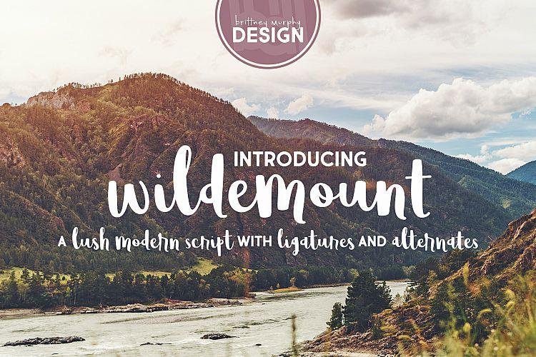 Wildemount example image 1