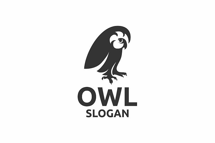 Owl example image 1