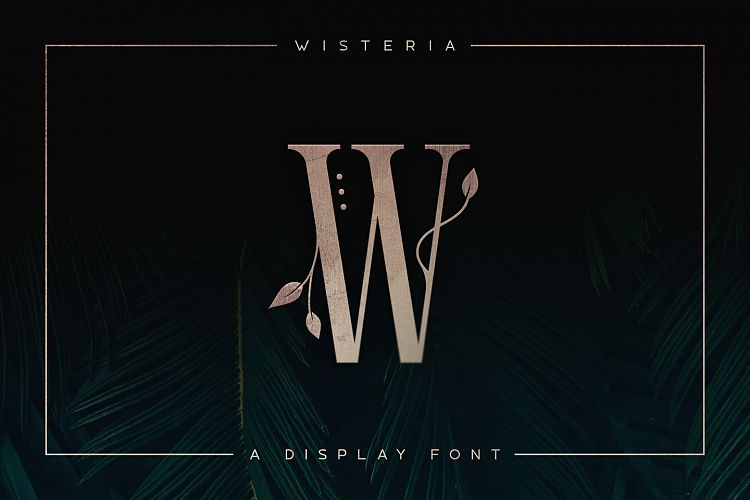 Wisteria - Display Font example image 1