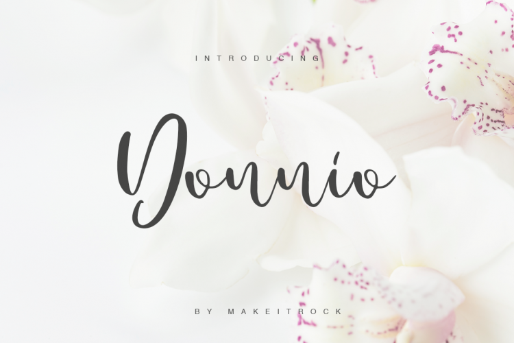 Donnio example image 1