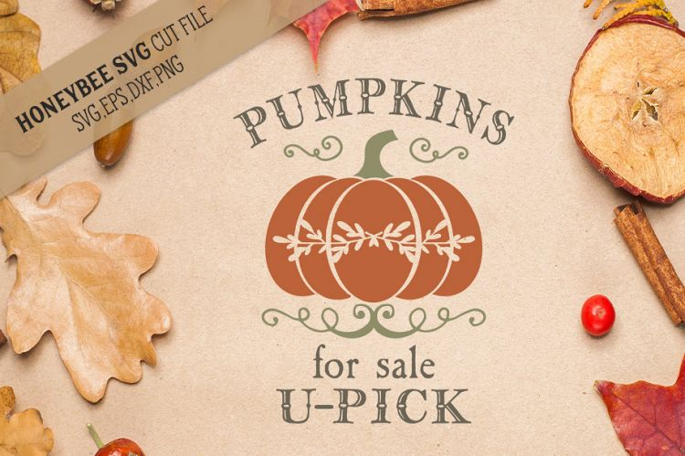 Download Pumpkins For Sale U-Pick DXF