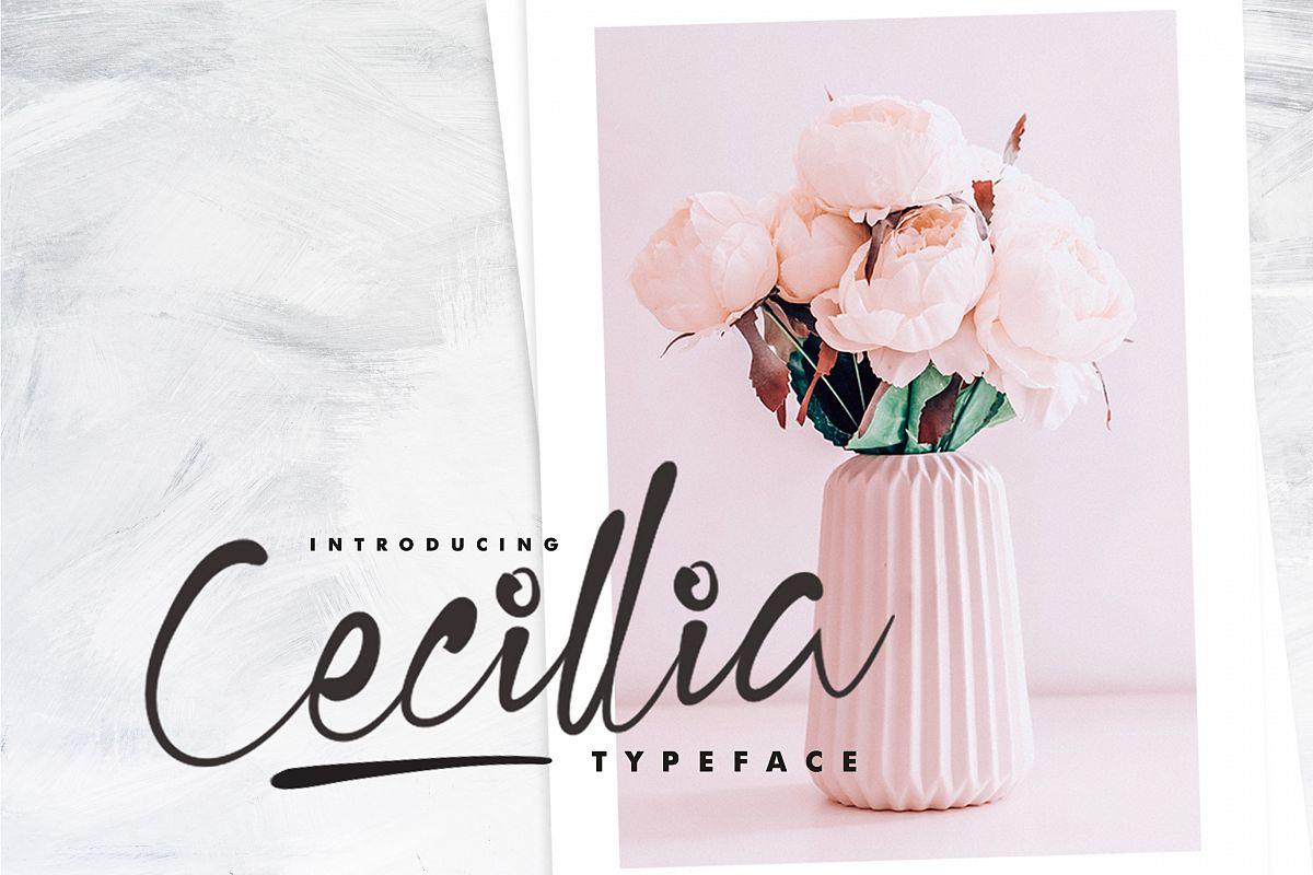 Cecillia - Script example image 1