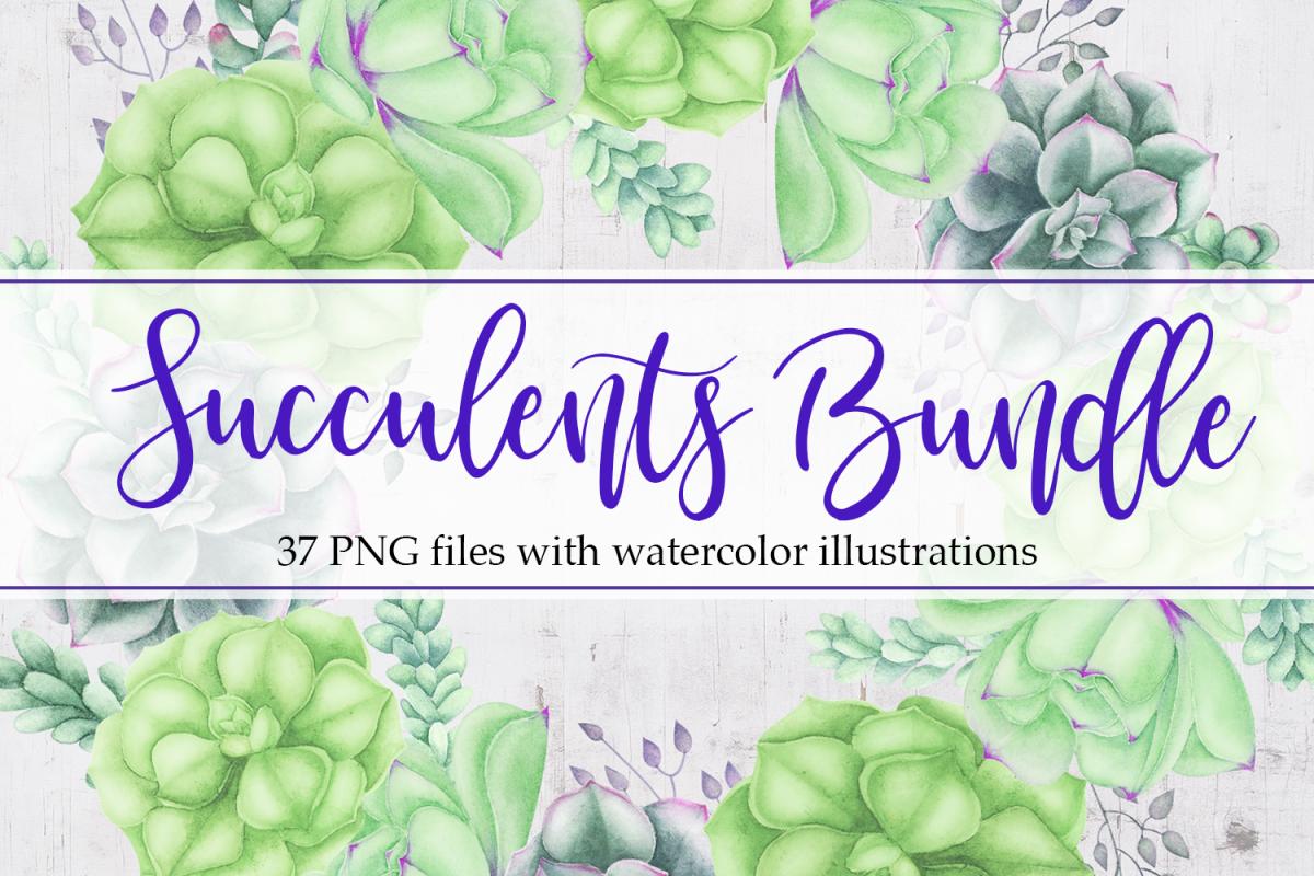 Succulents Bundle example image 1