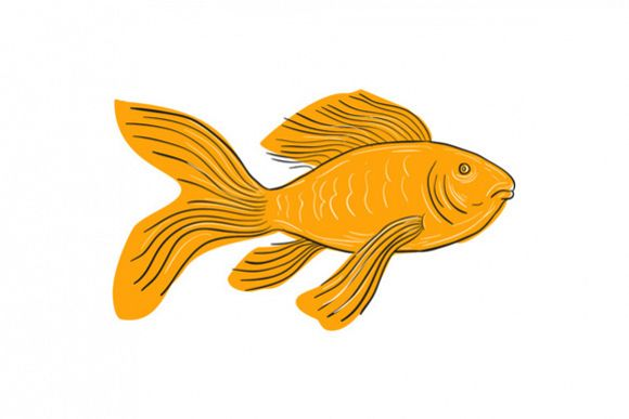 Gold Butterfly Koi Swimming Drawing example image 1