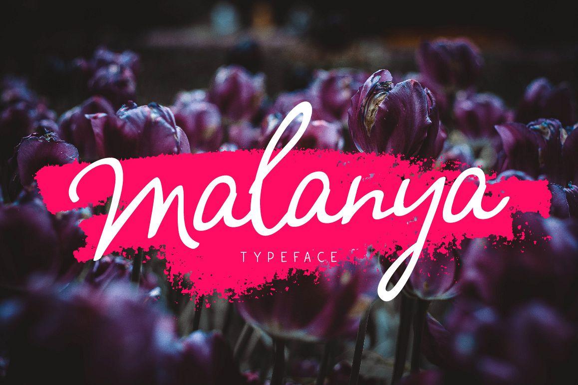 Malanya Typeface example image 1