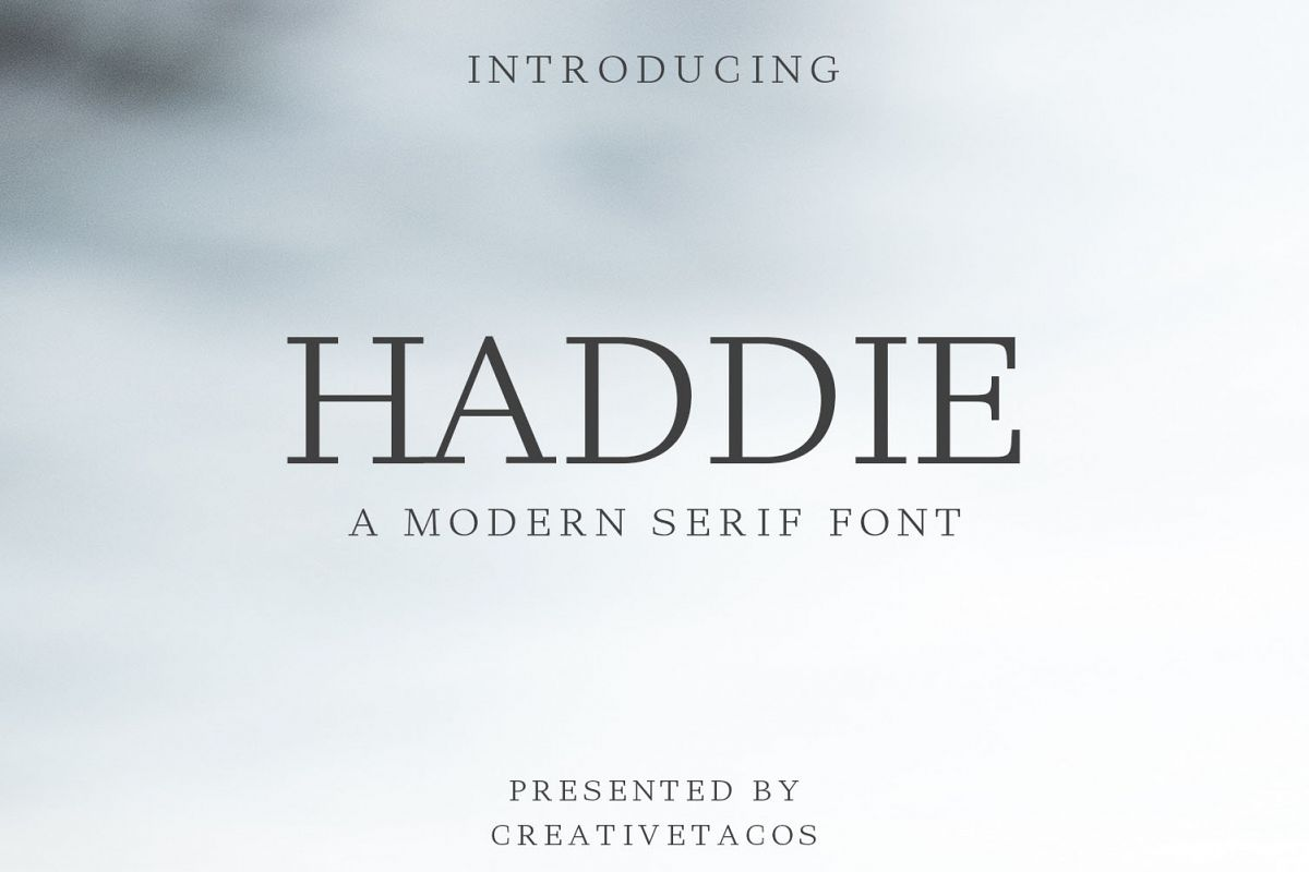 Haddie Modern Serif Font Family example image 1