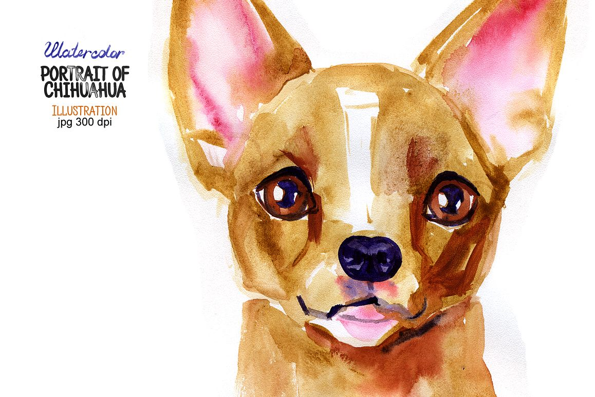 Watercolor portrait of Chihuahua. Illustration in jpg format (300 dpi). example image 1