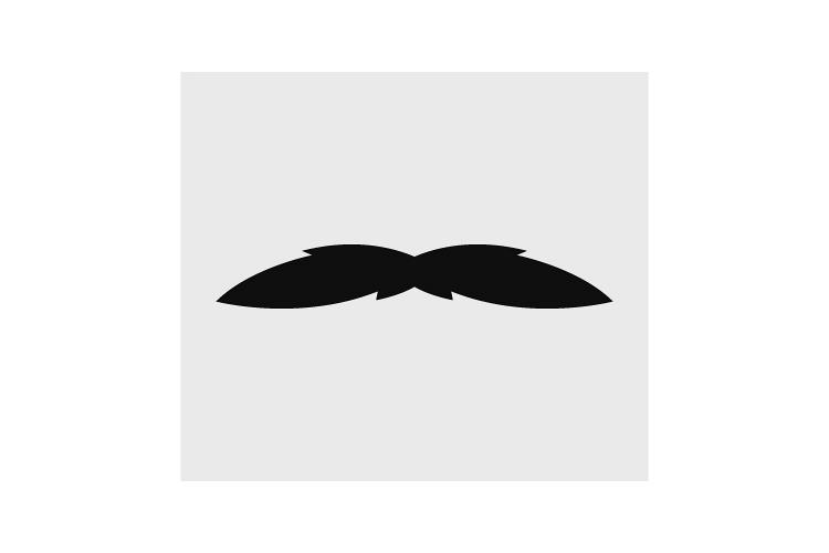 Mustache icon example image 1