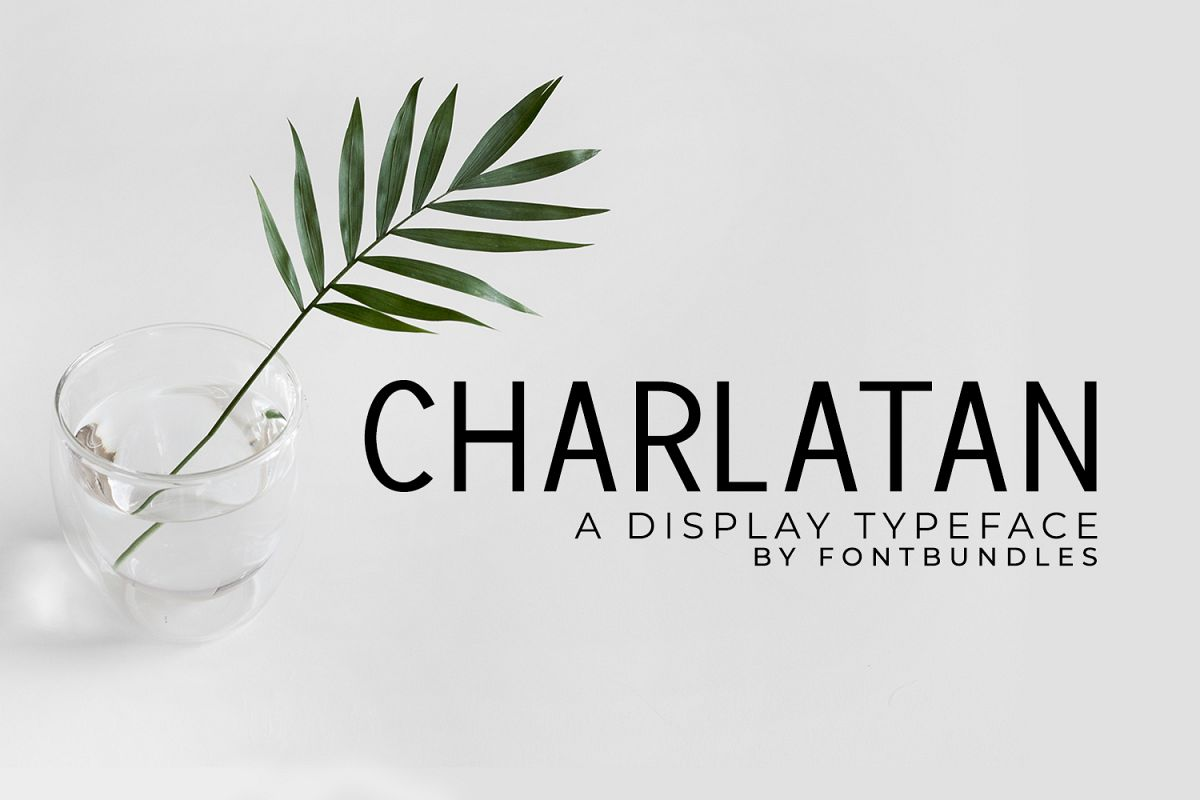 Charlatan example image 1