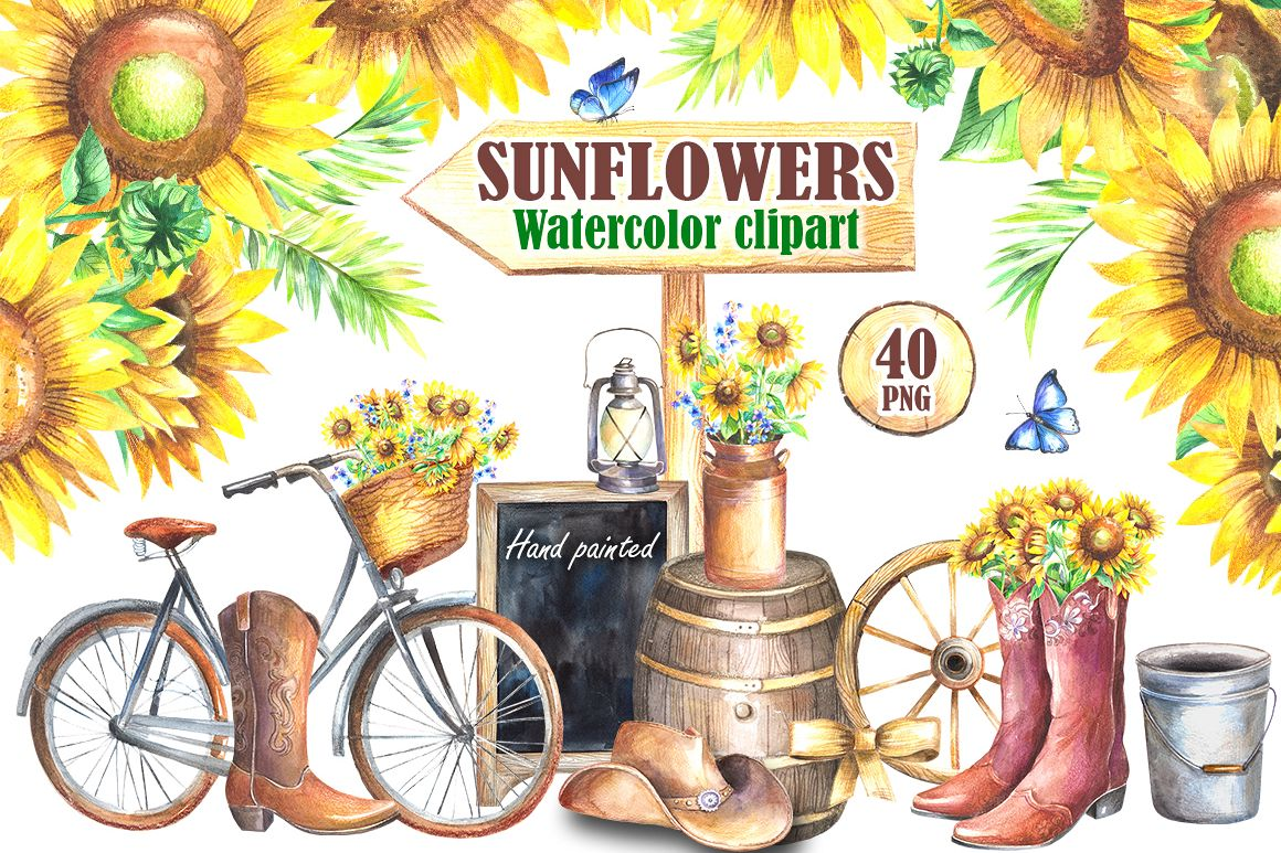 Sunflowers watercolor clipart example image 1
