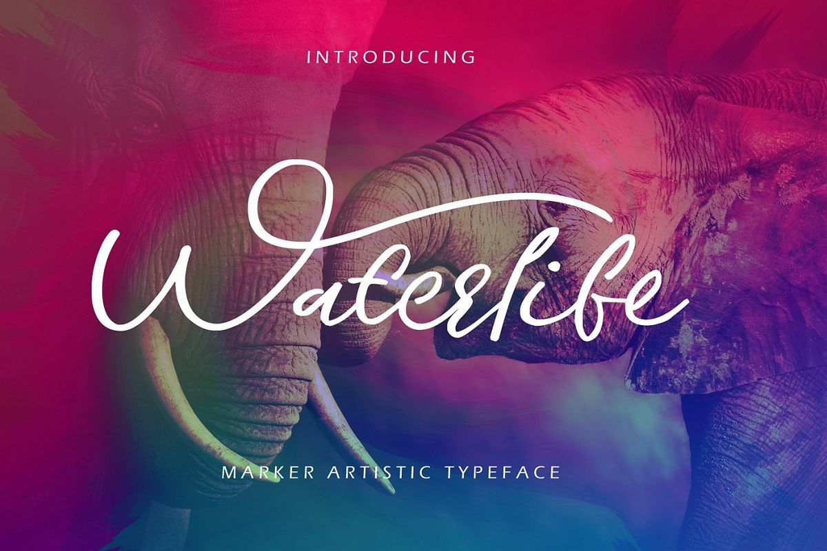 Waterlife Script Font example image 1