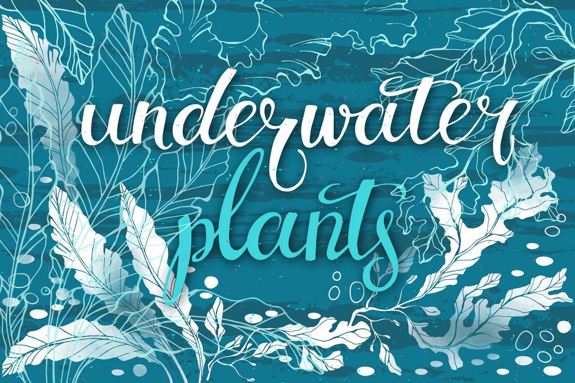 Underwater plants. Graphic set. example image 1