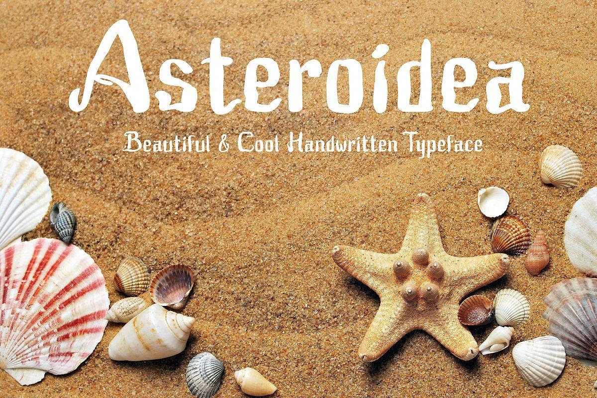 Asteroidea example image 1