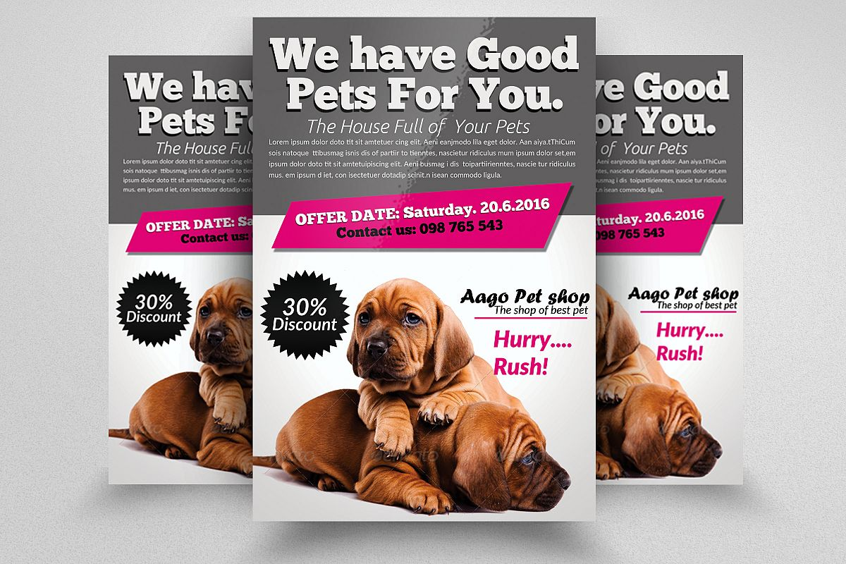 Pet Shop Flyer Templates example image 1