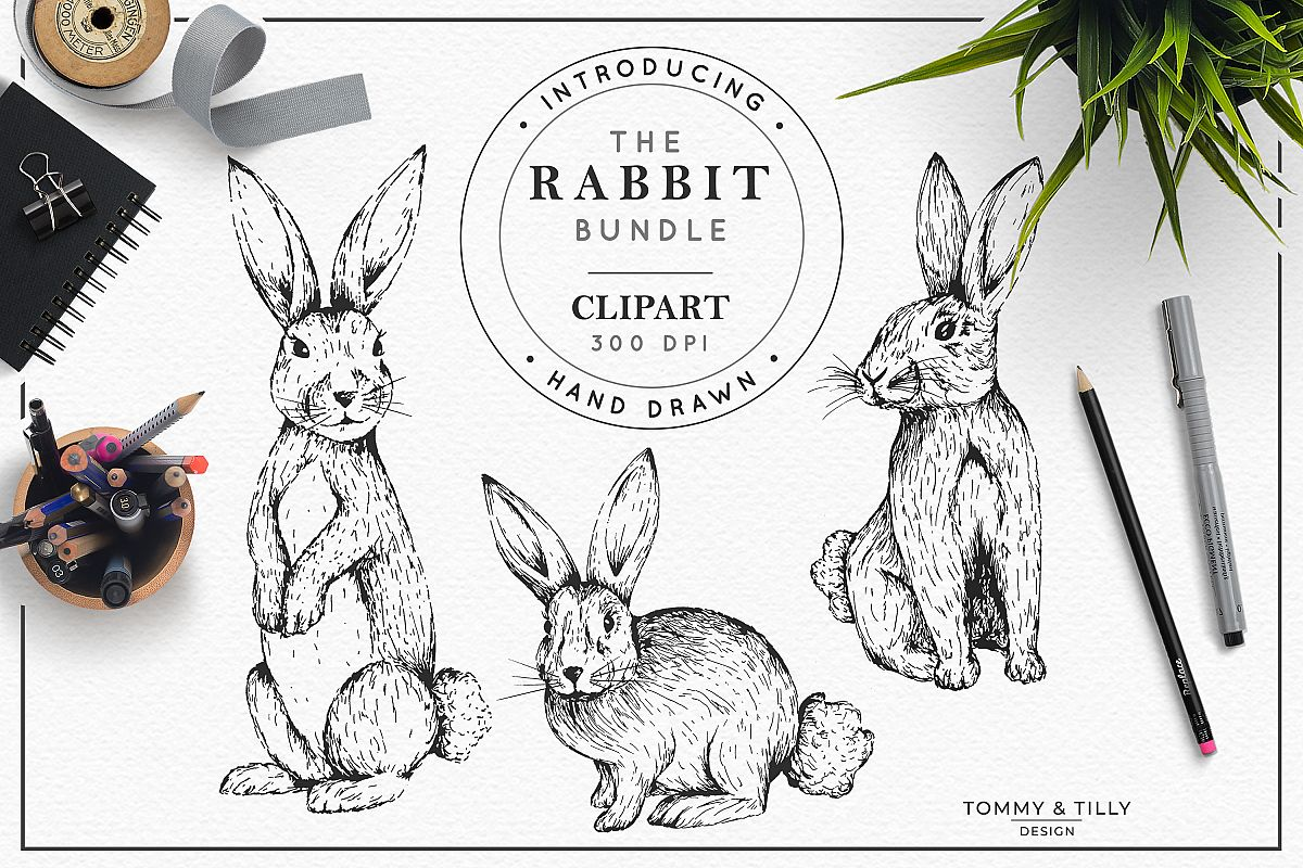 Hand Drawn Rabbit Bundle | High Quality Clipart | Png | example image 1