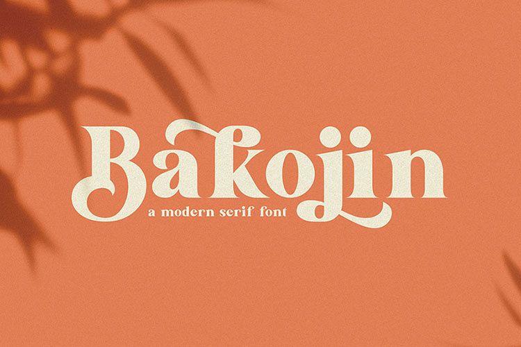Bakojin//Modern Serif Font example image 1
