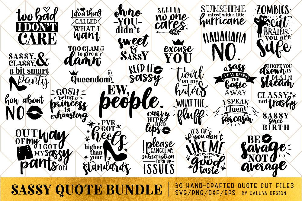 Sassy Quote SVG Cut File Bundle example image 1