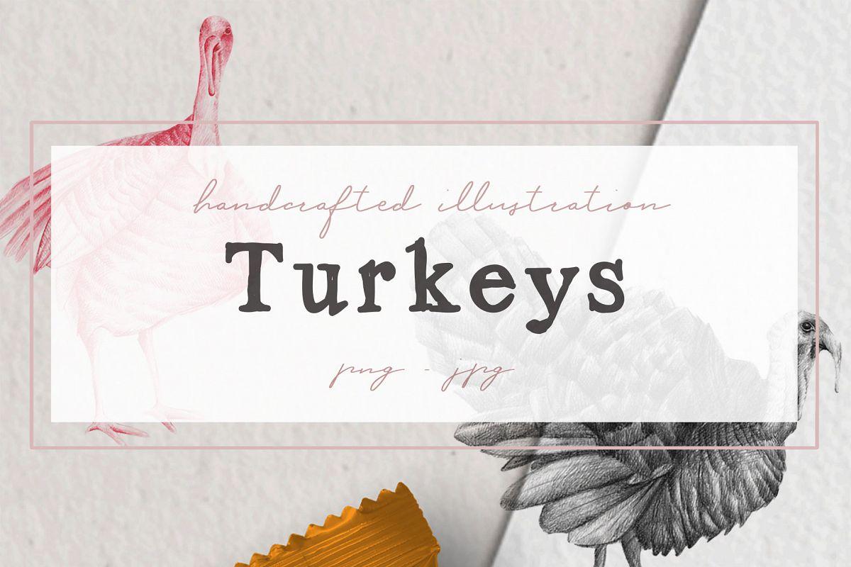 Hand drawn Turkeys Illustrations example image 1