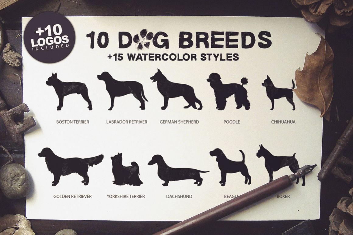 10 Dog Breeds + Extras example image 1