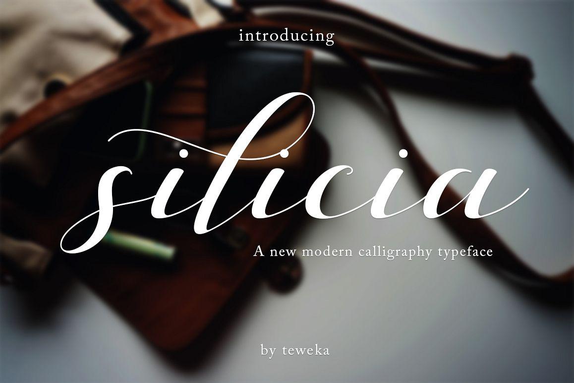 silicia script example image 1